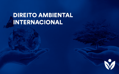 Extensão em Direito ambiental Internacional