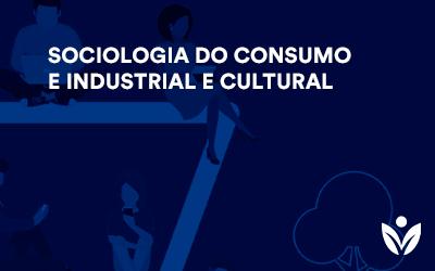 Extensão em Sociologia do Consumo e Industrial e Cultural