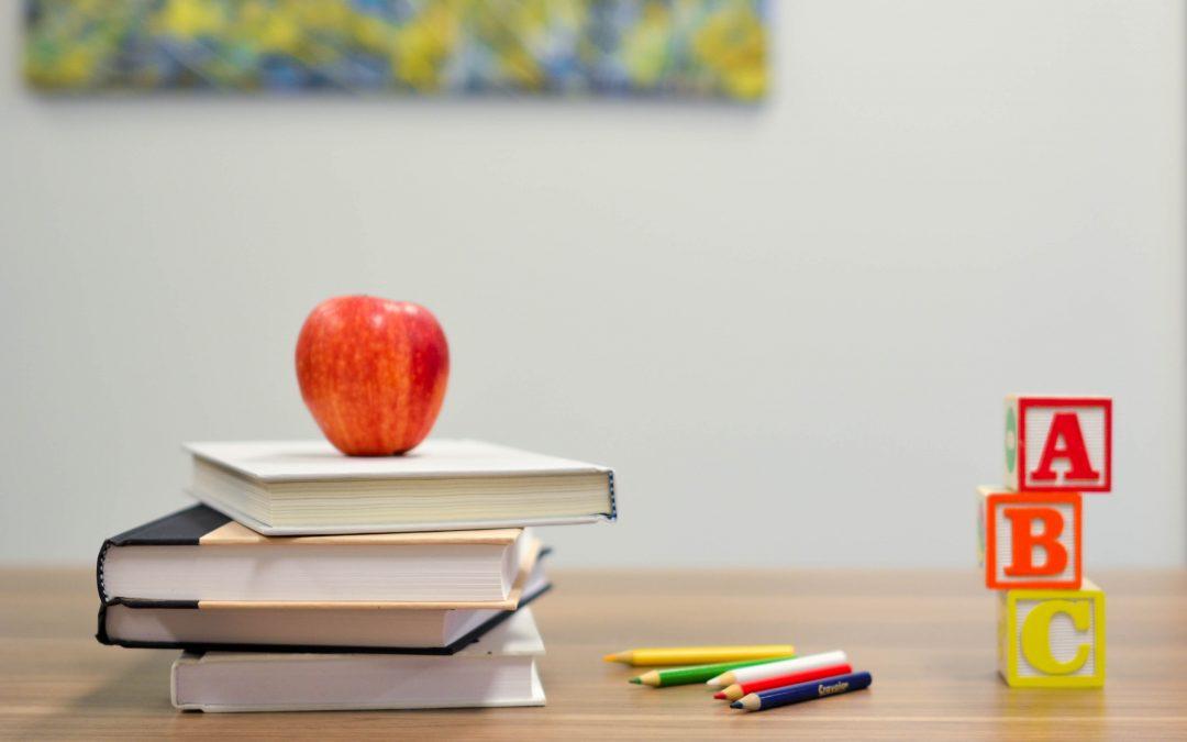 A arte e o ensino como instrumentos de transformação